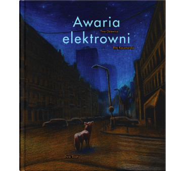 AWARIA ELEKTROWNI - DWIE SIOSTRY