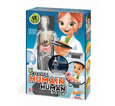 Ciało Człowieka - Model Ludzkiego Ciała - Świecący w Ciemności - BUKI