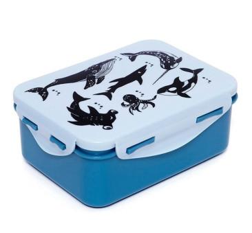 Deep Blue - Śniadaniówka Lunchbox - Petit Monkey